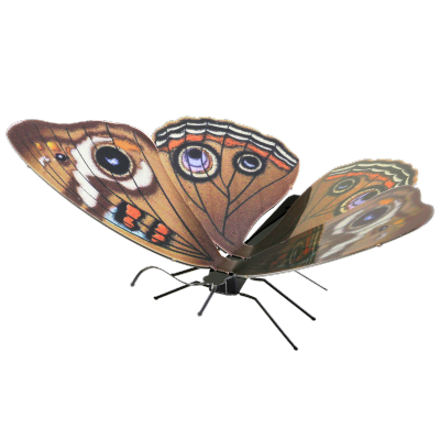 Metal Earth - Papillon Buckeye