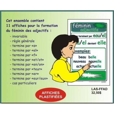 Ensemble d'affiche: Féminin des adjectifs