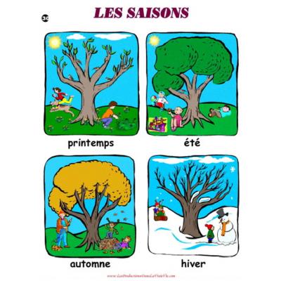 Affiche : Les saisons