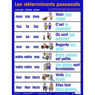 Affiche: Déterminants Possessifs