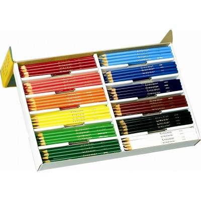 Crayons de Couleur en Bois : 240