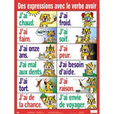 Affiche verbe: Expressions avec le verbe avoir