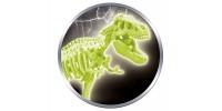 Archéo-Ludic : T-Rex
