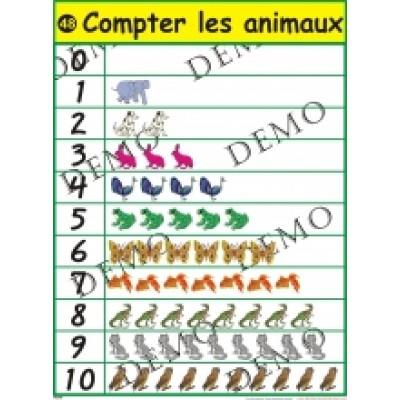 Affiche mathématique : Compter les animaux
